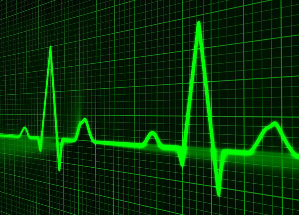 Healthy businesses take the pulse